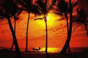 I love Hawaii.