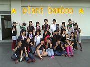 ☆plant bamboo☆