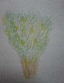 LemonTree ケイカク 2005