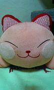 ☆長崎市近郊で猫が大好きな人☆