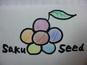 saku seed