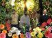 The Sunburst Band
