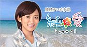 黒い連続テレビ小説『純と愛』