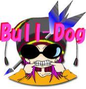 初心者ダーツ 【Bull-Dog】埼玉