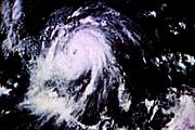 嵐のチュンジュウ会