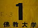 佛大体育実習〜夏のひまわり〜