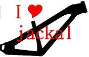 I love jackal!