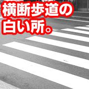 横断歩道の白い所。