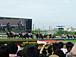 ★競馬の会★