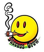 SUCCESS GROW