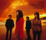 THE TWILIGHT VALLEY