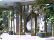 雲大留学生楼 '98