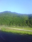 窪田小学校