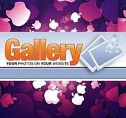 Gallery ( Open Source )