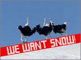 だらだらスキー