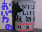 東京動物専門学校11期のヤツ!