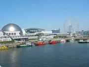 名古屋港水族館ボランティア