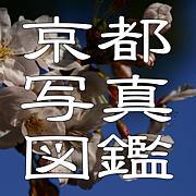 京都写真図鑑