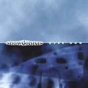 Snowdonnas