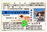 免許番号(,゚Д゚)