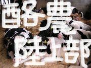 ☆酪農学園大学陸上競技部☆