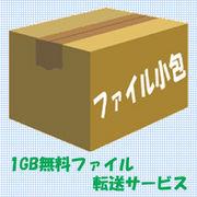 ファイル小包