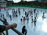 フィギュアスケート競技の採点