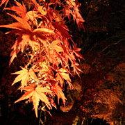 宵闇と秋風の薫物合を
