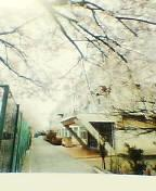 昭島市立福島中学校