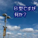B型の男とは!!??