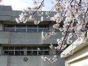 横浜市立桜井小学校17期生