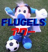 FLUGELS♡横浜F
