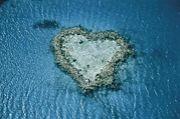 HEART♡ の島o(u∀uo)