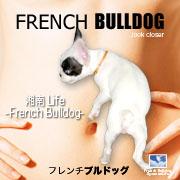 湘南Life -French Bulldog-
