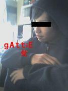 Gattieの会