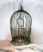 鳥籠 Lovers