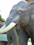 タイ調査実習2006