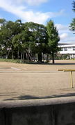 ♪小見川中央小学校♪
