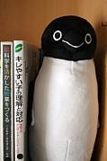 ペンギンアドベンチャー・ハウス