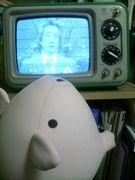 白黒テレビを使っている