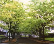 香川県立高瀬高等学校