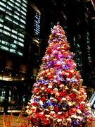 クリスマスツリー大会