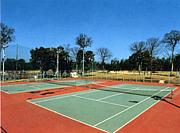 大阪テニス会★服部緑地、石橋