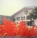 秋田県 横手市立増田小・中学校