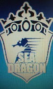 フットサルチームSEA DRAGON