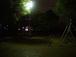 深夜の公園愛好家の集い