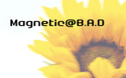Magnetic@B.A.D