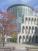 中京大学 現代社会学部