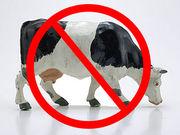 牛乳、乳製品は敵っ!!