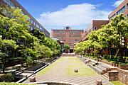 2013年度 大阪産業大学 新入生